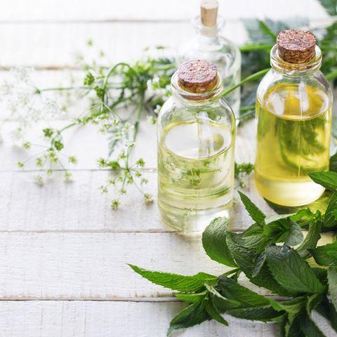 Pflege: Kosmetik mit Kräutern: Duftende Helfer aus der Natur