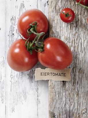 Tomatensorte Eiertomate