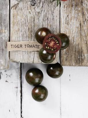 Tomatensorte Tiger-Tomate