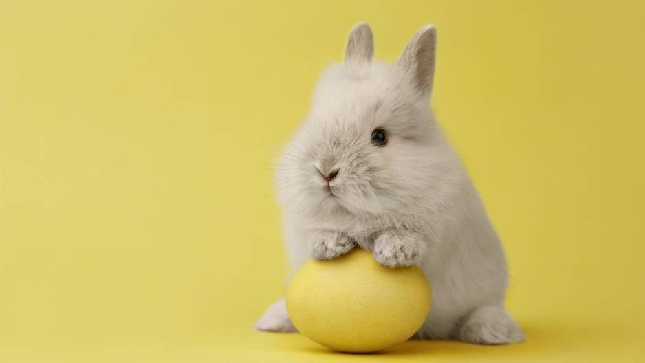 Dieser Spot macht Lust auf Ostern!