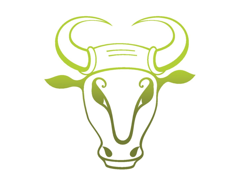 Mit Liebeskummer umgehen: Das macht der Stier