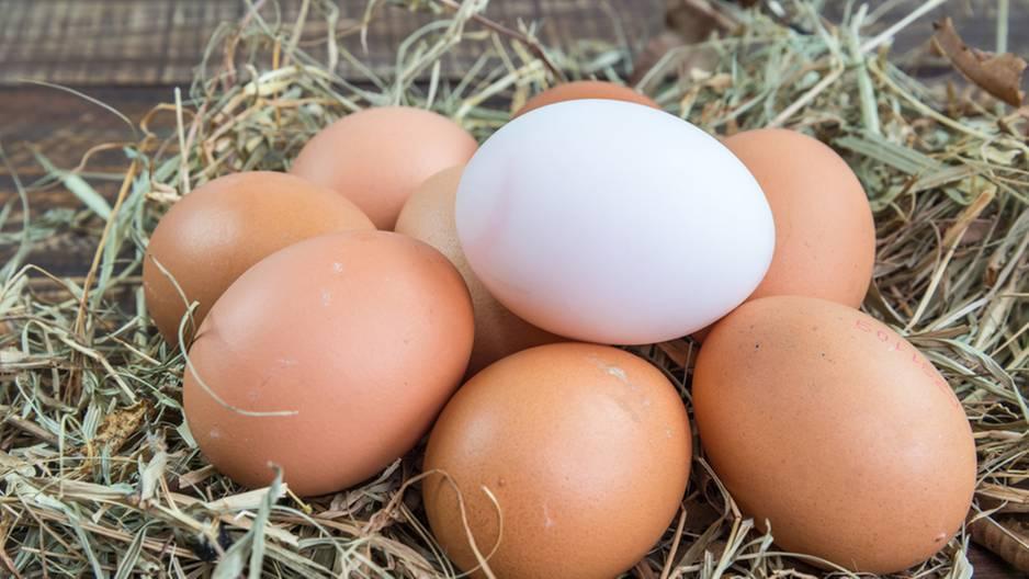 Braunes oder weißes Ei? DAS sorgt für die verschiedene Farbe!