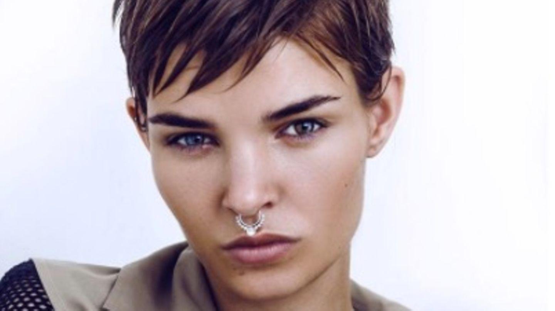 Luisa parship model Animal Models