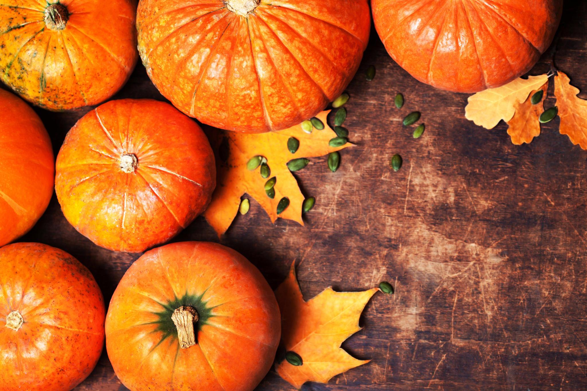 Hokkaido-Kürbis: Tipps und Rezepte für den Herbst | BRIGITTE.de