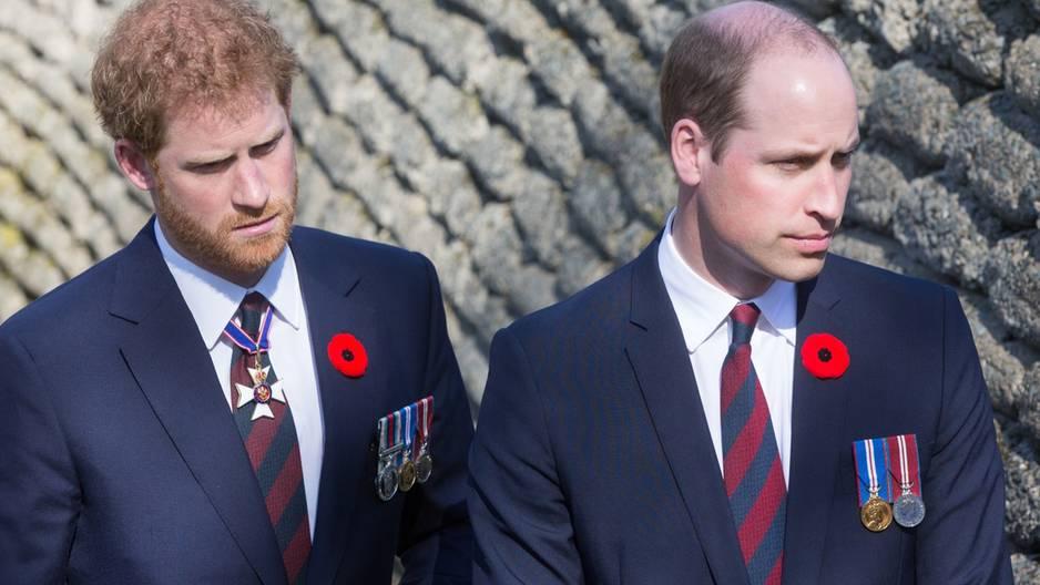 Die Prinzen William und Harry erzählen erstmals, wie Lady Di als Mutter war