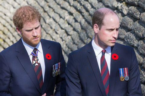 """William & Harry: Das letzte Gespräch mit ihrer Mutter werden sie """"immer bereuen"""""""
