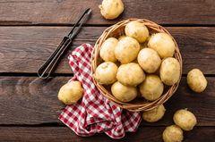 Kartoffeln richtig lagern und zubereiten