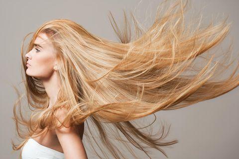 Der Revlon 360 Hair Dryer