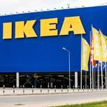Ikea launcht Kollektion für Hunde und Katzen