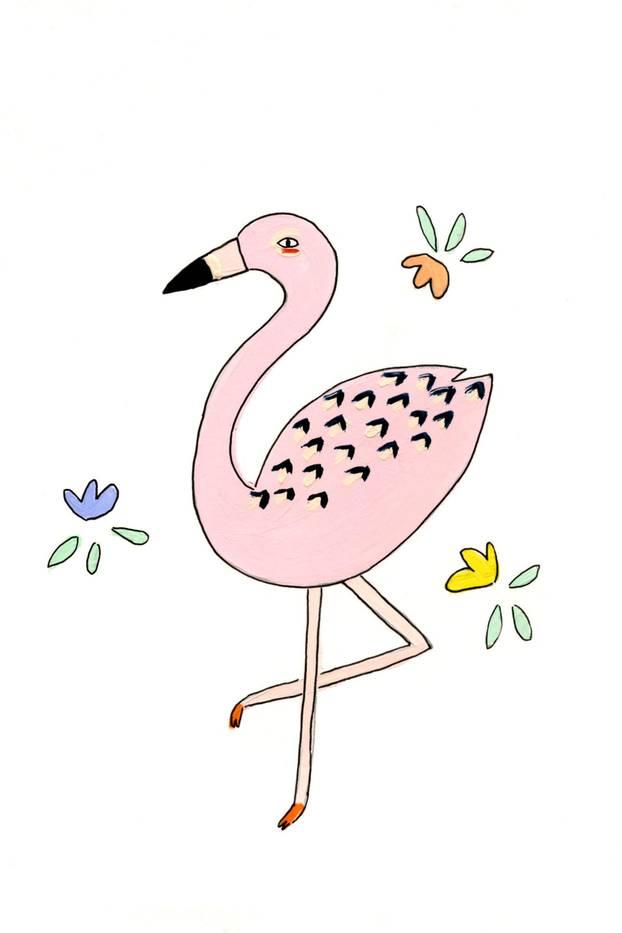 Jahreshoroskop Jungfrau: Flamingo