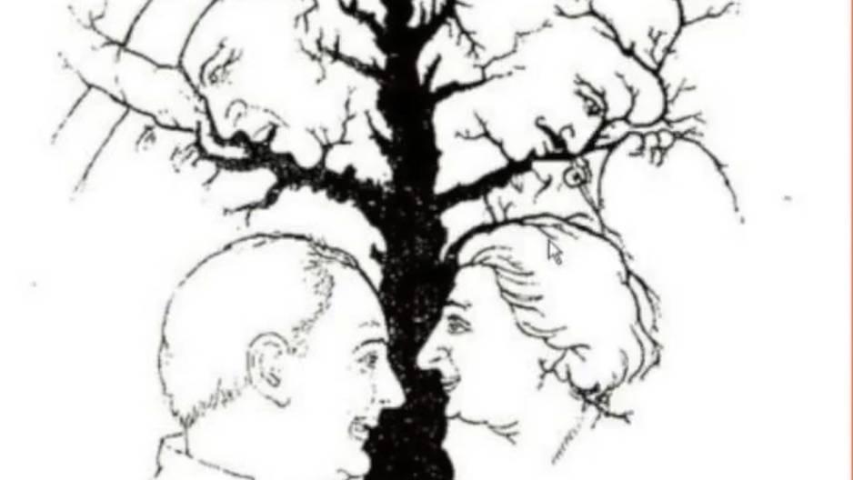 Wie viele Gesichter findest du in diesem Baum?