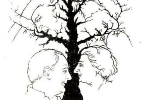 Psychologie: 5 Eigenschaften, an denen du sozial intelligente Menschen erkennst