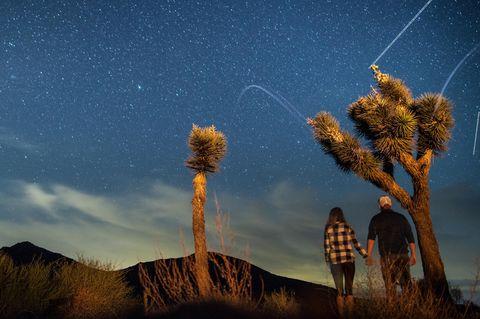 Symbolbild: Ein Paar steht händchenhaltend unter einem Baum im Joshua Tree National Park.
