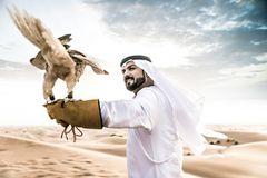 Falke in der Wüste