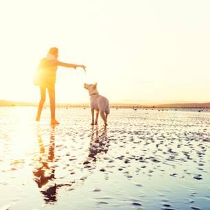 Eine junge Frau am Strand mit einem Hund.