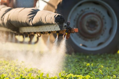 EU entscheidet: Glyphosat bleibt für weitere fünf Jahre erlaubt