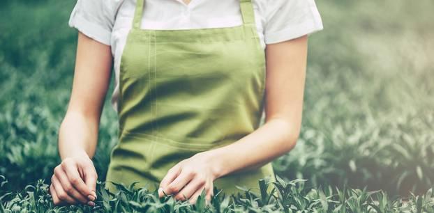 Nähen für den Garten - Schönes für draußen