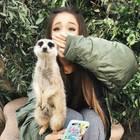 Ariana Grande auf Instagram