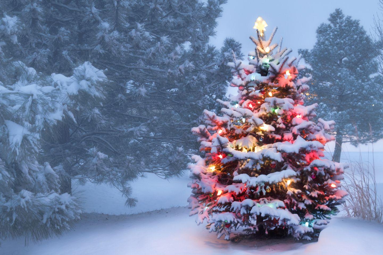 Wetter-Prognose: Bekommen wir weiße Weihnachten?