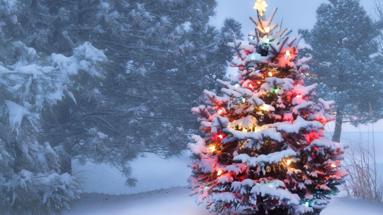 Prognose WeiГџe Weihnachten 2021