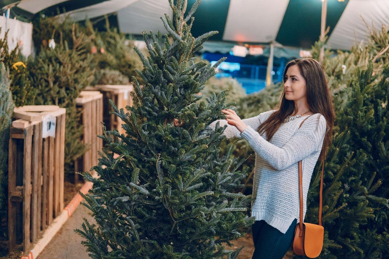 Weihnachtsbäume im Test - fast alle sind mit Pestiziden belastet!