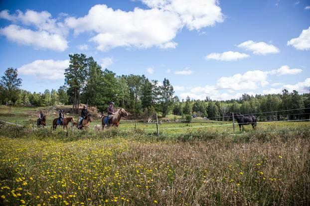 Wanderreiten Schweden