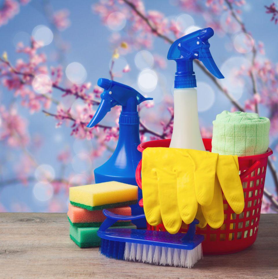 Frühjahrsputz: Tipps für die Großreinigung