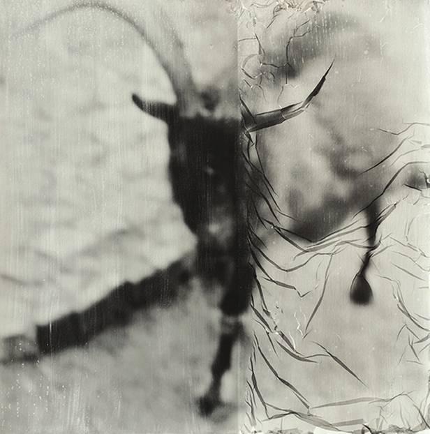 """Degenerato | Degeneriert"", 50 x 50 cm, analoge s-w Fotografie, Fotoemulsion auf Aquarellpapier, Handabzug, Unikat, 2016"
