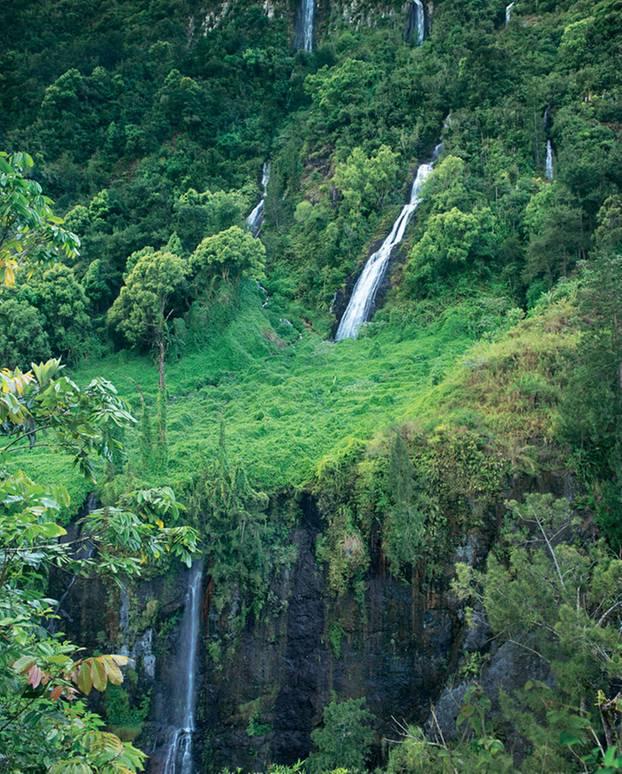 """Wildes Grün: Der """"Cirque de Salazie"""", in dem zahlreiche Wasserfälle den Urwald gießen, ist einer von drei Talkesseln des erloschenen """"Piton des Neiges"""""""