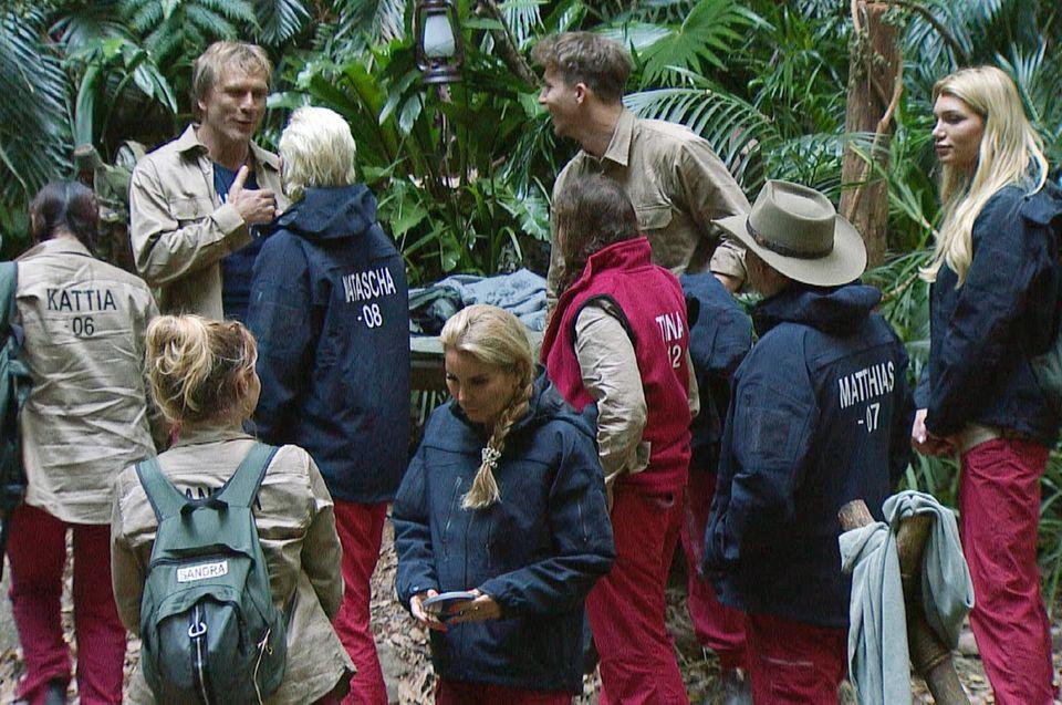 """Im Dschungelcamp angekommen, wird erst mal über die """"Zustände"""" diskutiert."""