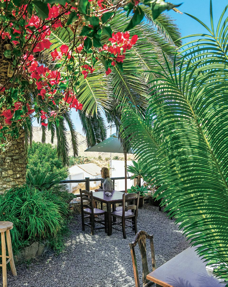 "Fuerteventura: Garten der ""Casa de la Naturaleza"""