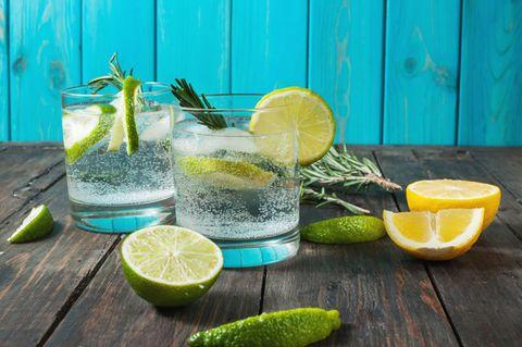 Luxusgut? NÖ! – Dieser Discounter-Gin gehört zu den besten der Welt!