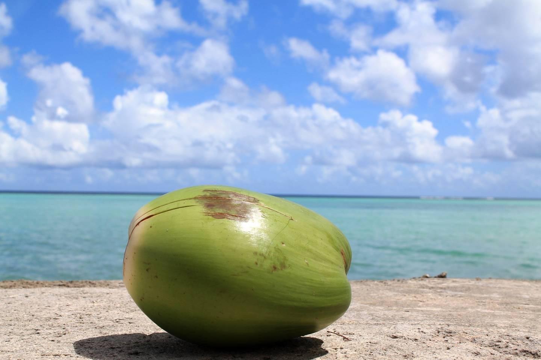 Vier Gründe warum du mehr Kokoswasser trinken solltest
