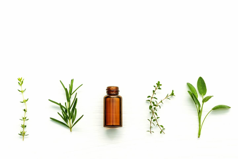 Lecker! – Fünf Parfums, bei denen uns das Wasser im Mund zusammenläuft