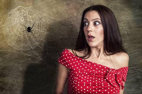 Kreisch! Krabbeln Spinnen aus dem Staubsauger etwa wieder raus?