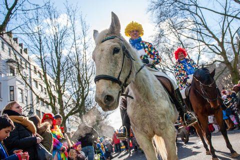 Nach Unfall in Köln: Sollten Pferde im Karneval verboten werden?