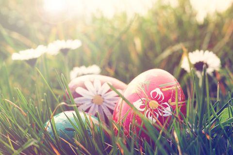 Ostereier bemalen: Eier im Grad