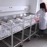 Japaner bekommt Sorgerecht für 13 Kinder: Kinderbetten in einem Krankenhaus (Symbolbild)