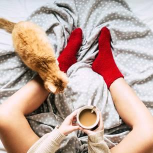 Eine Frau sitzt mit einer Kaffeetasse zwischen den Beinen auf dem Bett mit ihrer Katze