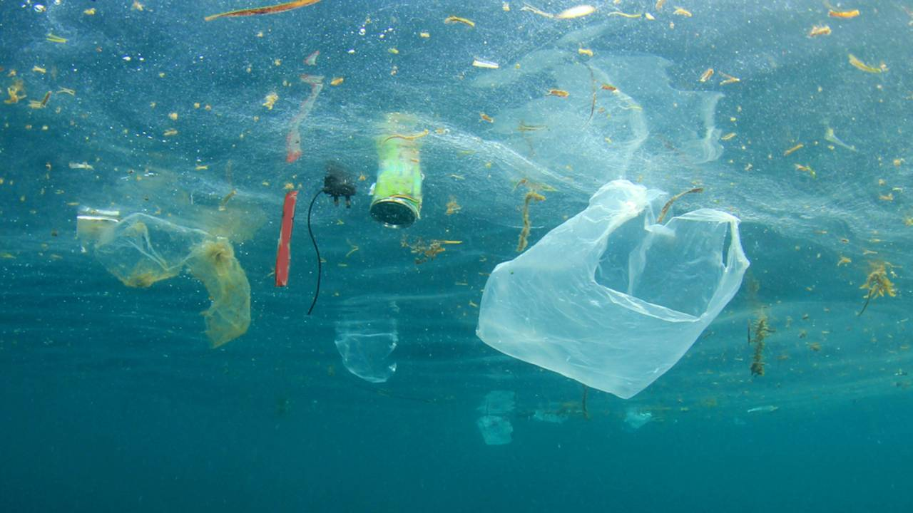 Plastikmüll im Ozean: Endlich eine Aktion, die hilft!