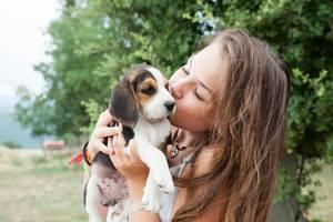 """Haustiere für Kinder: """"Meine Tochter bekommt nur Weidenkätzchen"""""""