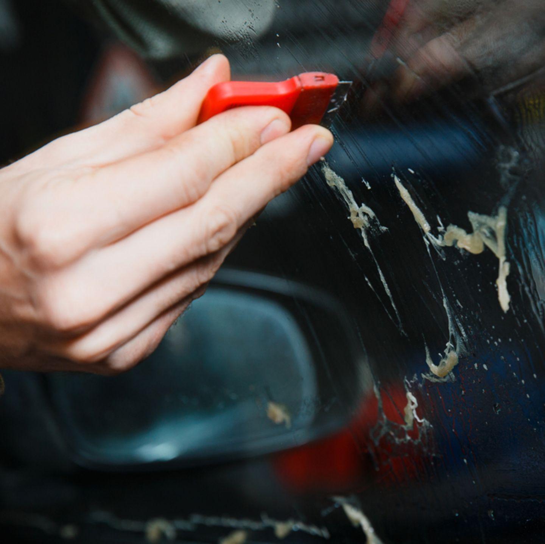 Klebereste entfernen: Die besten Tipps  BRIGITTE.de