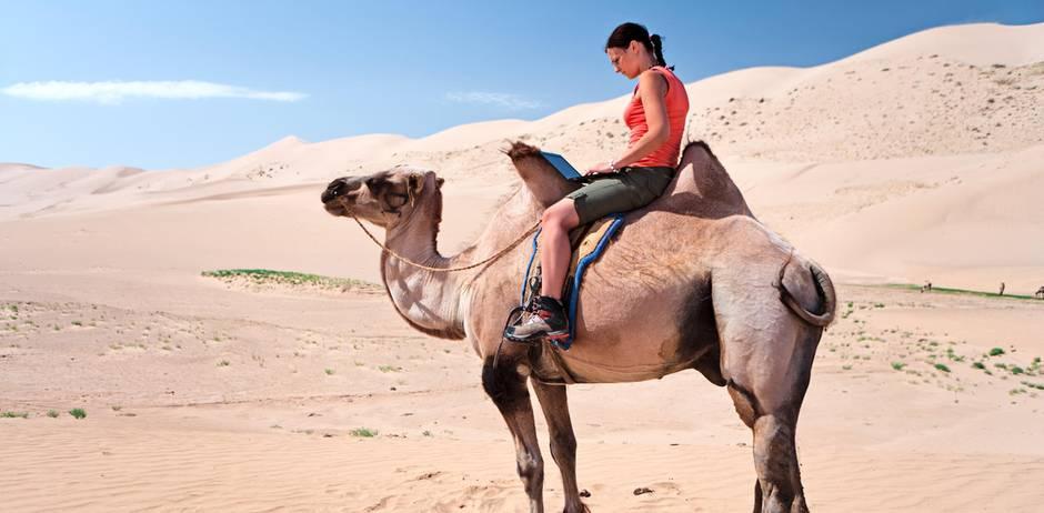 Schick Sie In Die Wüste Freundschaft Kündigen Ist Auch Eine Lösung