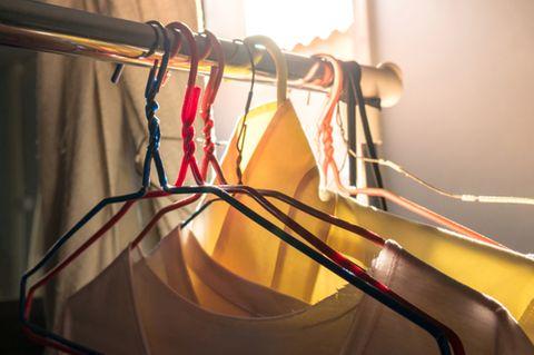 Motten bekämpfen: Kleiderschrank mit Motten