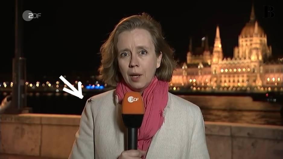 Video: Spinne krabbelt auf Reporterin – und Claus Kleber sagt kein Wort!