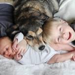 Hund und Kinder: Das rät die Expertin