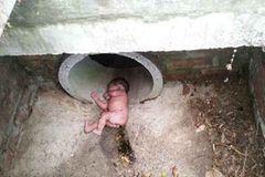 Unfassbar: Wunderbaby überlebt Entsorgung im Abwasserschacht