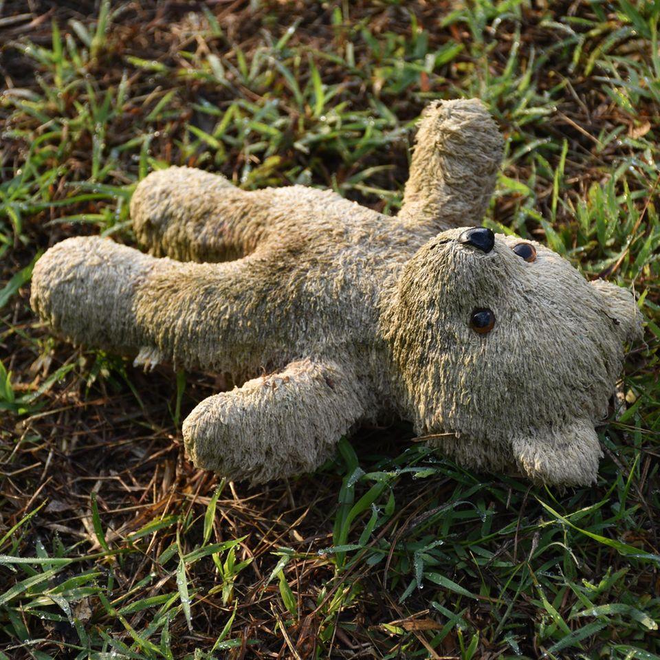 Ein verlorener Teddybär auf einer Wiese