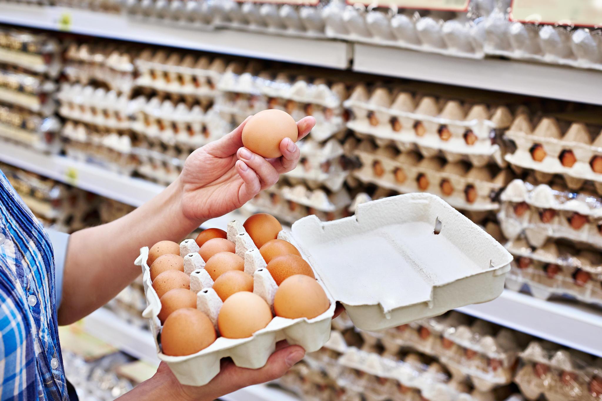 Der Hersteller Inter-Ovo ruft Freilandeier zurück, nachdem bei einer Überprüfung Salmonellen gefunden worden sind.  Ein wichtiger Rückruf betrifft die Kunden der fünf Supermarkt-Ketten Edeka, Rewe, Penny, Netto und Norma. Der Eier-Lieferant, der die Märkte mit Freilandeiern versorgt, warnt vor dem Verzehr und der Zubereitung seiner Ware.  Hintergrund: Bei einer Überprüfung der Eier sind  Salmonellen gefunden worden, die Übelkeit, Brechreiz und Durchfall verursachen können. Der Hersteller ruft sicherheitshalber alle womöglich betroffenen Eier zurück, Kunden können sie auch ohne Kassenbon wieder in den Laden bringen.  Betroffen sind Eier der folgenden Marken mit dem Eiercode 1-DE-0353974:  Norma: Gutsglück Eier 10 frische Eier aus Freilandhaltung MHD: 29.04.2018 und 20.05.2018  Rewe: Beste Wahl 6 Eier aus Freilandhaltung XL MHD: 09.05.2018, 10.05.2018 und 17.05.2018  Netto: Vom Land 10 frische Eier aus Freilandhaltung MHD: 02.05.2018, 06.05.2018, 10.05.2018, 12.05.2018 und 20.05.2018.  Penny: Columbus 10 Eier aus Freilandhaltung MHD: 09.05.2018  Edeka: Gut & Günstig 10 Eier aus Freilandhaltung MHD: 02.05.2018, 10.05.2018 und 13.05.2018
