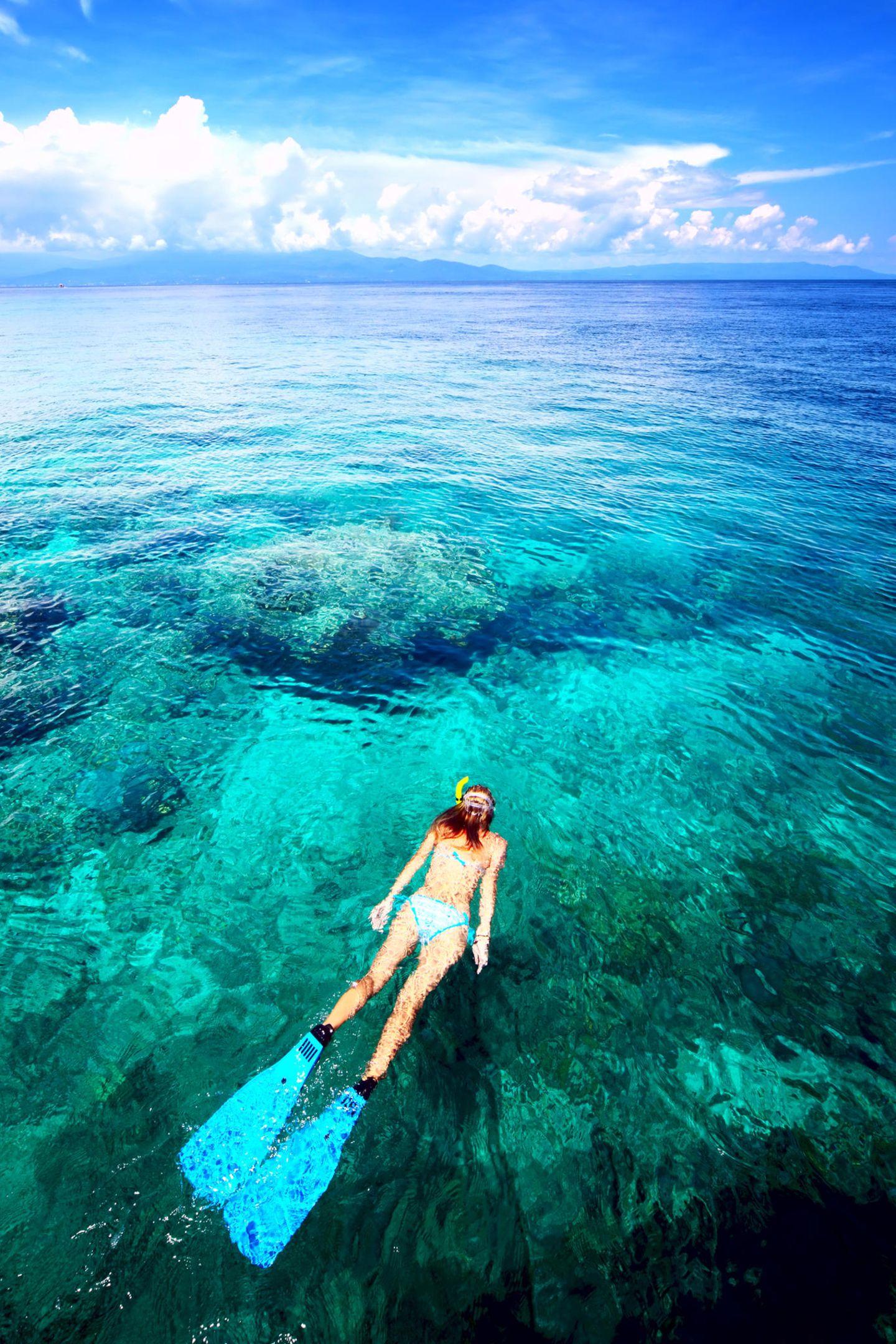 Sonnecreme schädigt Korallen